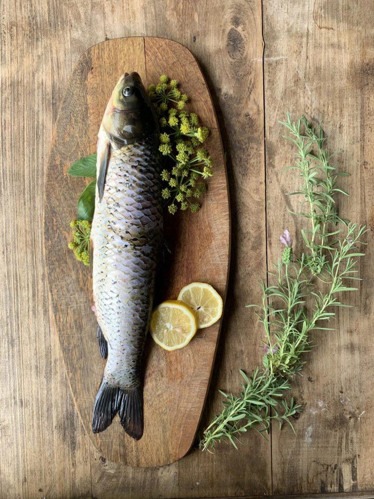 Poisson frais pêché de l'étang pour la cuisine d'été