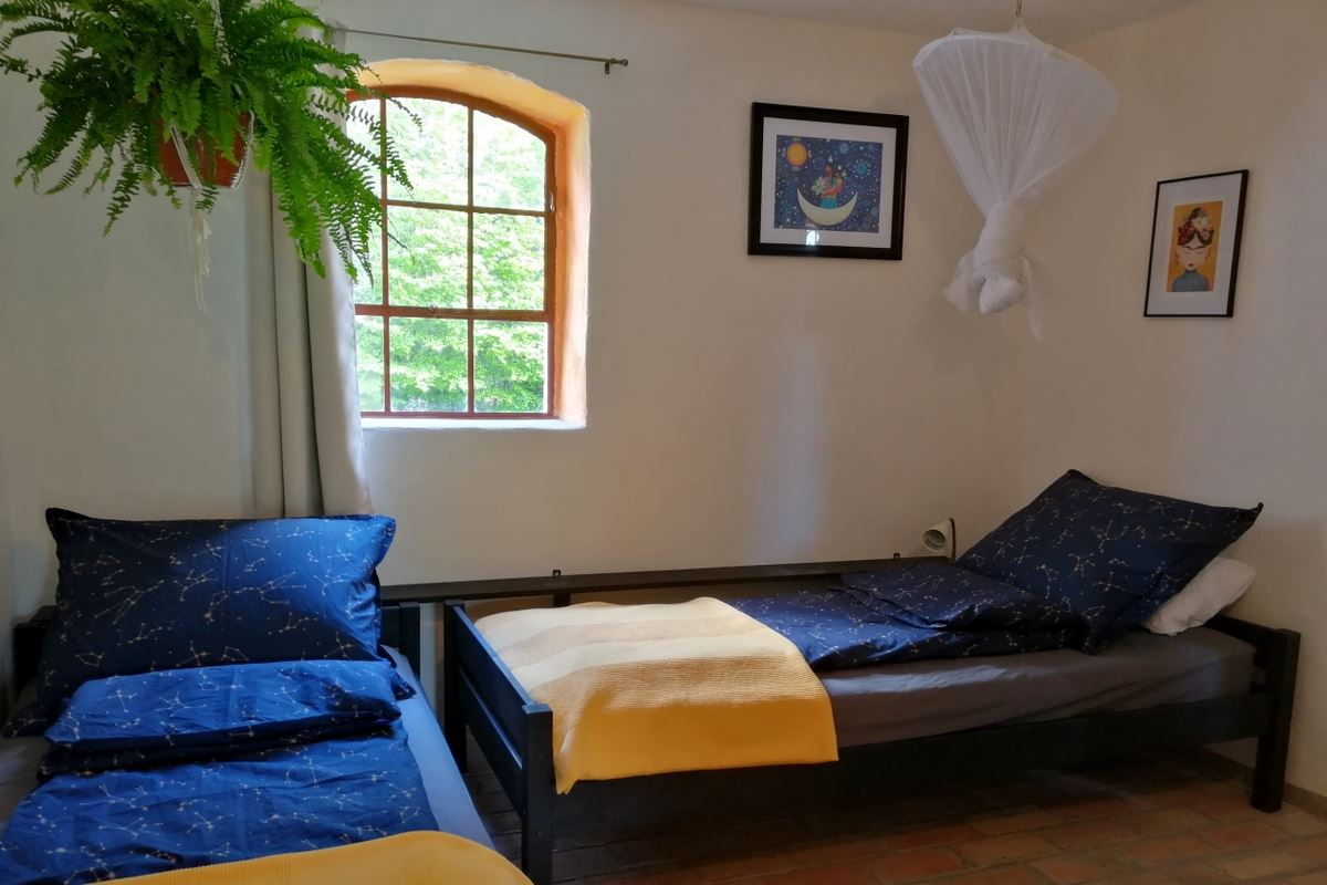 Quercus room children room