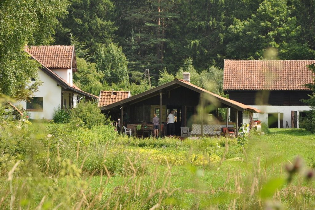 Summer Kitchen view from the forest