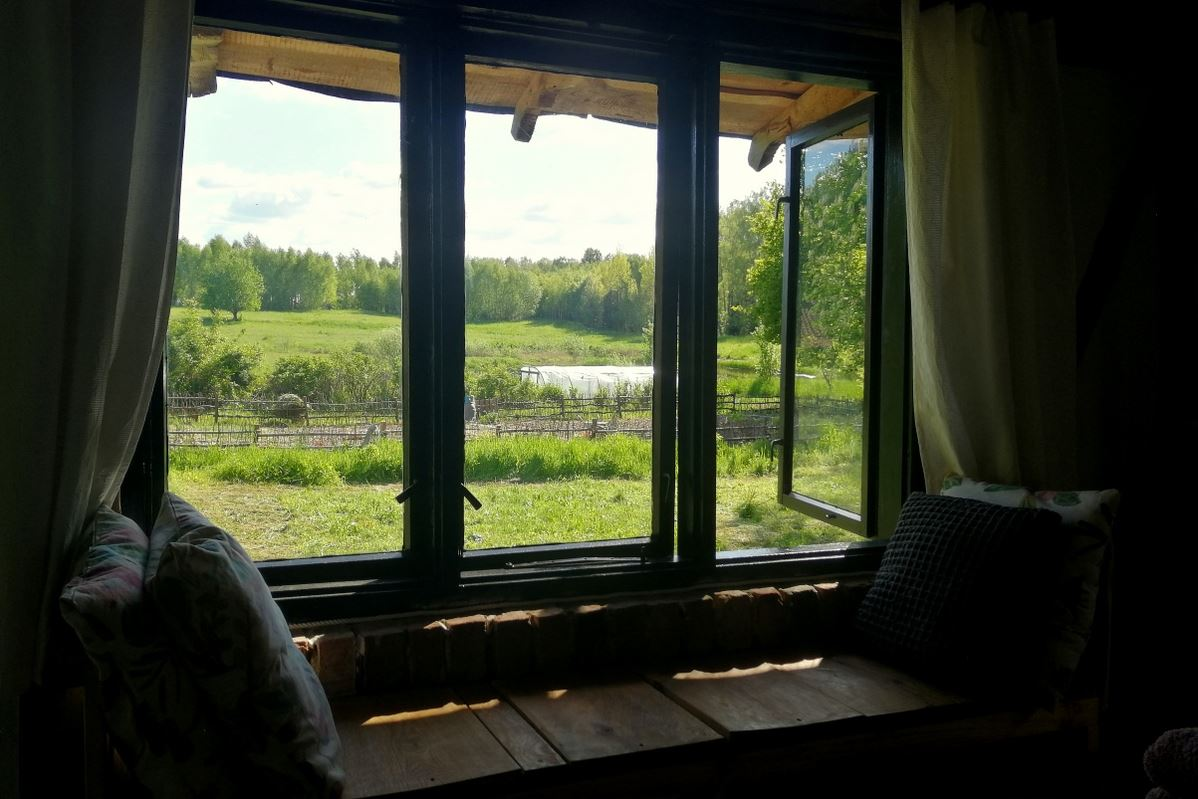 Summer cabin outdoor view from the bed