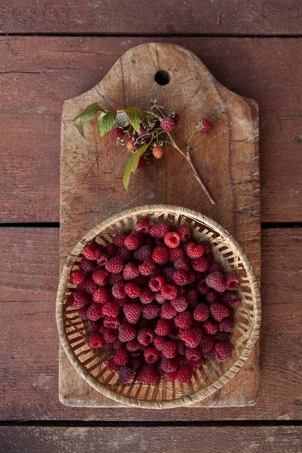Letnia Kuchnia Guesthouse. Fresh raspberries from the garden