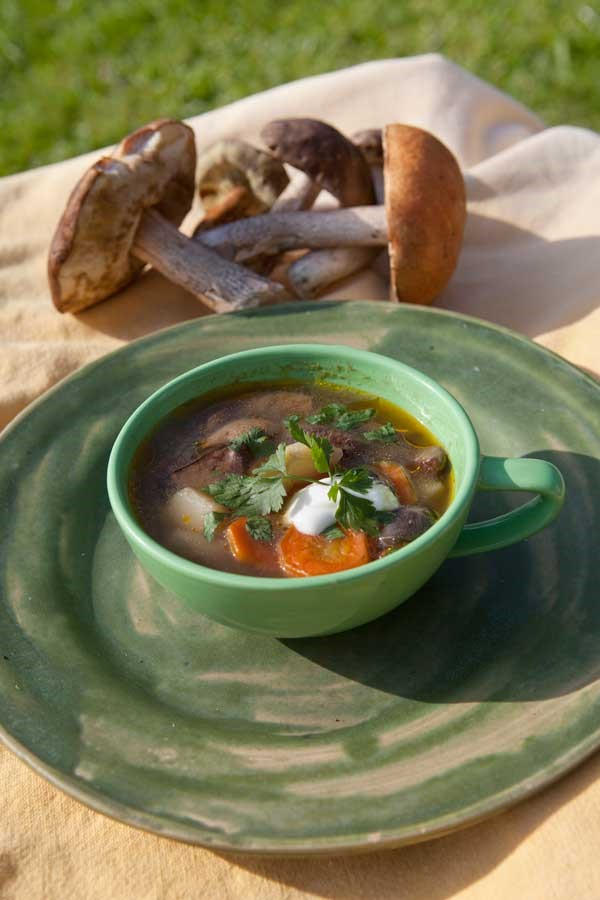Siedlisko Letnia Kuchnia zupa grzybowa