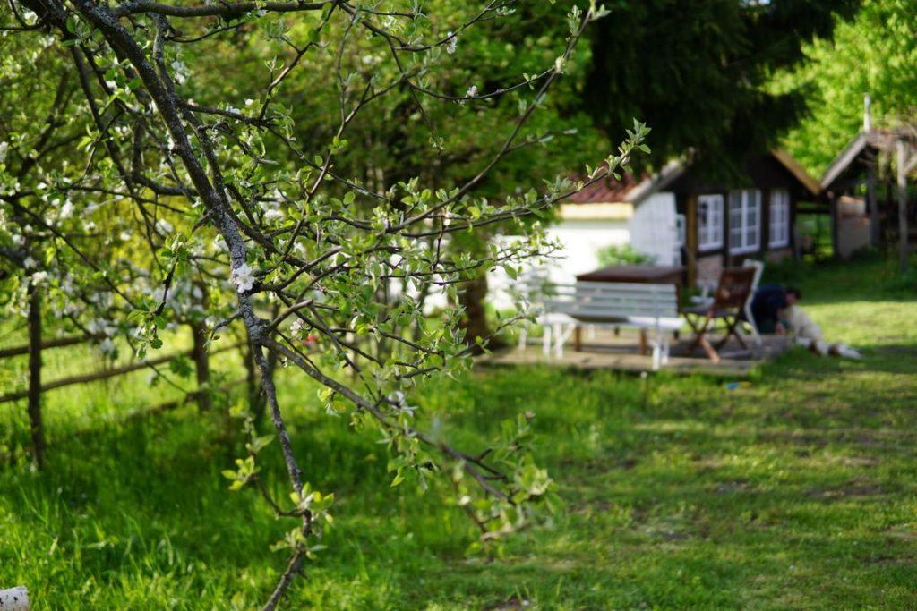 Letnia Kuchnia garden with the view on Letnia Kuchnia
