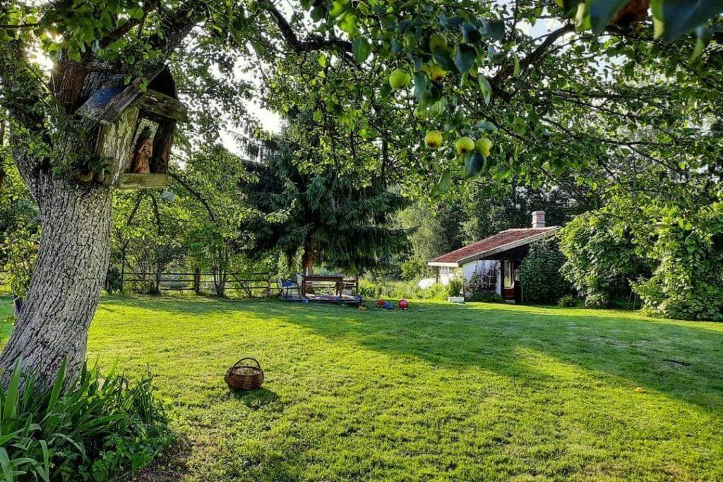 Yard of summer kitchen accommodation poland
