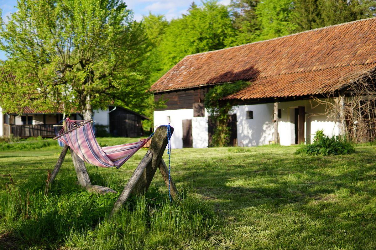 Siedlisko Letnia Kuchnia Warmia Mazury Natura Agroturystyka Las Rodzina Wakacje (58)
