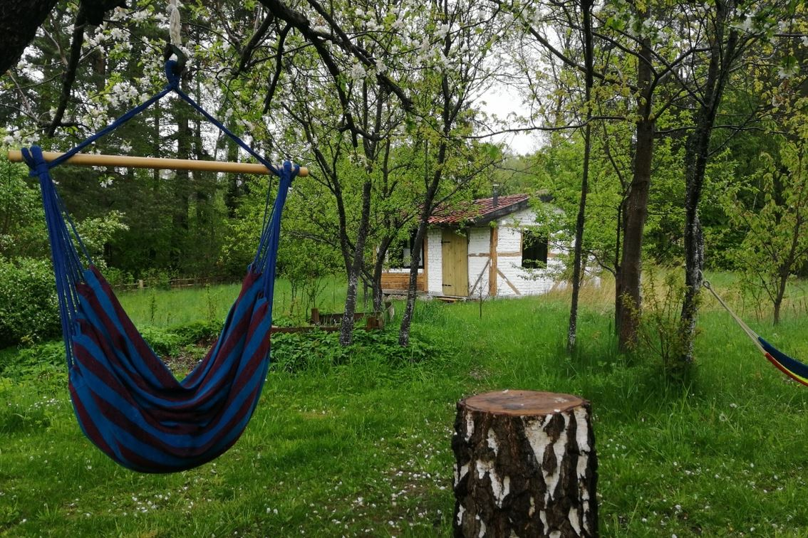 Warmiak cabin seen from hammock area